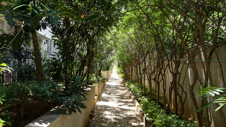 Vaishnavi Orchids walking area | Best Ready to move 3 BHK & 4 BHK villas are for sale at Sarjapur Road, bengaluru